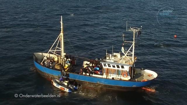 Wrakduiken in de Noordzee